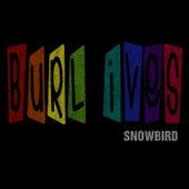 Snowbird by Burl Ives