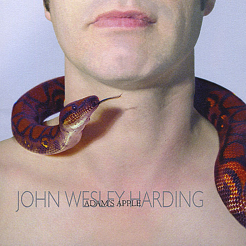 Adam's Apple by John Wesley Harding
