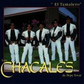 El Tamalero by Los Chacales de Pepe Tovar