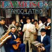 Tango Latino by La Mosca Tse Tse