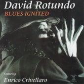 Blues Ignited by David Rotundo