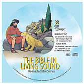 38. Nehemiah's Visit/A Great Work by The Bible in Living Sound