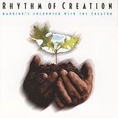 Rhythm Of Creation by Studio Musicians