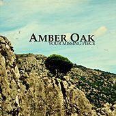 Your Missing Piece by Amber Oak