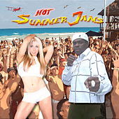 Hot Summer Jams by Various Artists