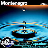 Aquarium (Remixes) by Monte Negro