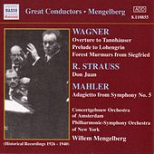 Wagner / R. Strauss / Mahler by Various Artists
