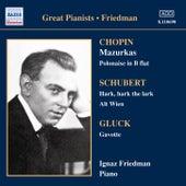 Complete Recordings Vol 3 by Ignaz Friedman