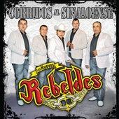 Corridos Al Sinaloense by Los Nuevos Rebeldes