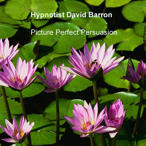 Picture Perfect Persuasion by Hypnotist David Barron