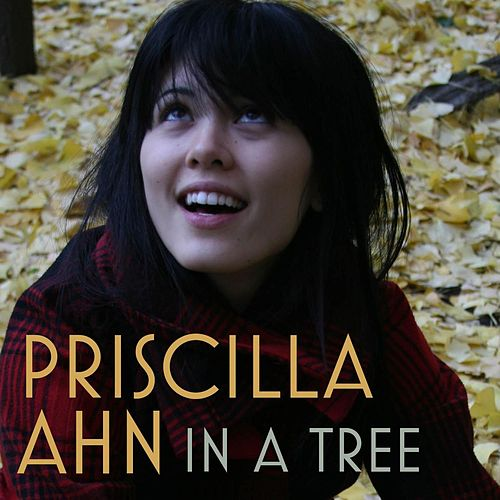 In A Tree by Priscilla Ahn