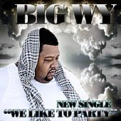 We Like To Party by Big Wy