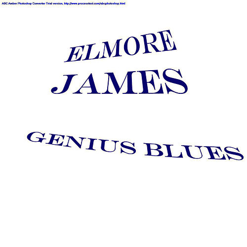 Genius Blues by Elmore James