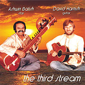 The Third Stream by Ashwin Batish