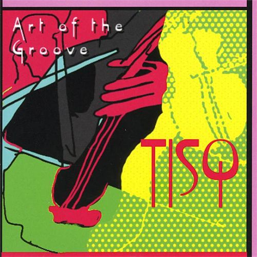 Art Of The Groove - Music By Chick Corea, Leonard Bernstein, Michael Brecker And More by Turtle Island String Quartet