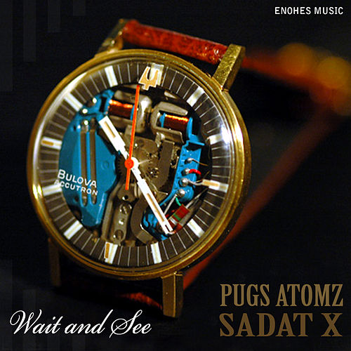 Wait and See by Pugs Atomz