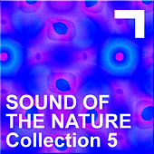 Sound Of The Nature – Collection 5 by Various Artists