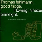 Good Fridge. Flowing: Ninezeronineight by Thomas Fehlmann