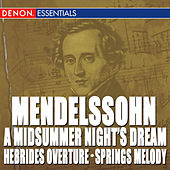 Mendelssohn: A Midsummer Night's Dream Overture - Hebrides Overture - Other Orchestral Works by Various Artists