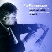 FerRomanzen: Wilfried Glas, Markus Vorzellner by Wilfried Glas