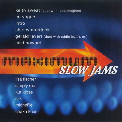 Maximum Slow Jams by Various Artists