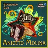 Sembrando Cafe by Aniceto Molina