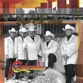 Paso a la Reina [CD & DVD] by Cardenales De Nuevo León