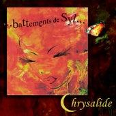 Battements de Syl... by Chrysalide