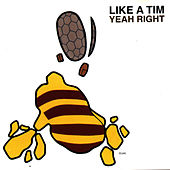 Yeah Right by Like A Tim