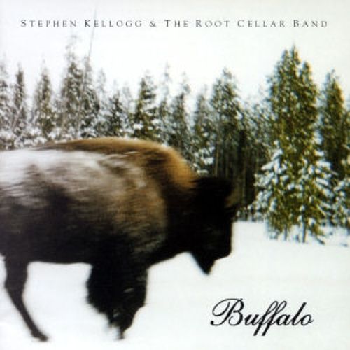 Buffalo by Stephen Kellogg