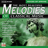 The Most Beautiful Melodies Of Classical Music, Vol. 2 by Various Artists