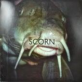 In the Margins by Scorn