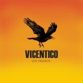 Los Pájaros by Vicentico
