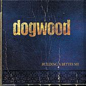 Building A Better Me by Dogwood