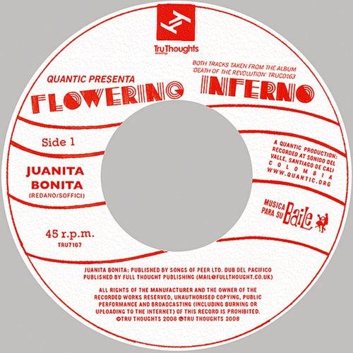 Juanita Bonita 7 by Quantic
