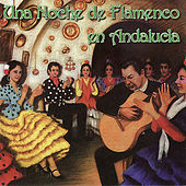 Una Noche de Flamenco en Andalucia by Various Artists