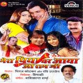 Mera Piya Ghar Aaya O Ram Jee (Bhojpuri Film) by Various Artists