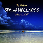 Spa and Wellness Collection 2009 by Spa Music Masters