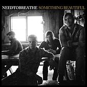 Something Beautiful by Needtobreathe
