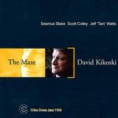 The Maze by David Kikoski
