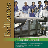 Brillantes - Acapulco Topical by Acapulco Tropical