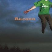 Till Monkeys Fly by Racoon