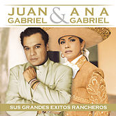 Cantan A Mexico - Juan Gabriel Y Ana Gabriel by Various Artists