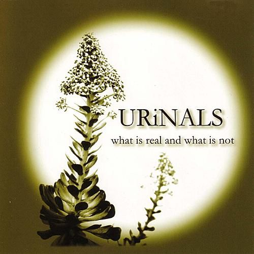 What Is Real And What Is Not by Urinals