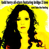 Can't Fake the Feeling by Todd Terry