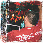 In The Mix by Various Artists