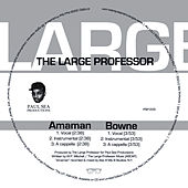 Amaman & Bowne by Large Professor