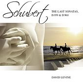 Schubert Sonatas D959 D960 by David Levine