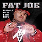 Opposites Attract by Fat Joe