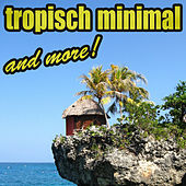 Tropisch Minimal & More by Various Artists